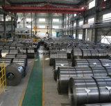 Катушка сбывания фабрики горячие окунутые гальванизированные стальные/тонколистовая сталь Hgi свертывают спиралью Dx51d+Z
