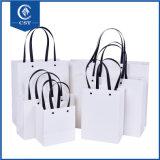 Het Winkelen van de bevordering de Zak van de Juwelen van de Boodschappentassen van het Document van Kraftpapier van de Zak