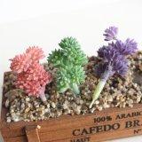 Небольшой подарок Искусственные растения пластиковые Succulents растений