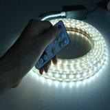 Ww+W 2cor LED de teto metálico à prova de iluminação da luz de LED