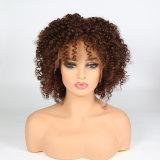 100% de cabelo humano pleno Lace Peruca Kinky Curly /Encaracolado Peruca da onda