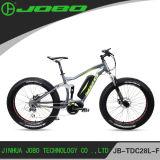 販売Jb-Tdc28L-Fのための熱い販売の製造者の電気脂肪質のバイク