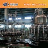 Machine Fillng van het Sap van het glas de Hete