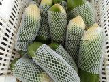 새로운 작물 신선한 당근 (백색 녹색 무)
