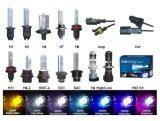 12V / 24V 35W / 50W 9005 HID Xenon Lamp 4300k 6000k 8000k em estoque