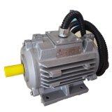 Ijzer dat Elektrische Motor Op hoge temperatuur giet