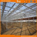 Haute serre chaude de plantation agricole en verre d'exécution de coût
