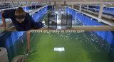 HDPE material impermeable Geomembrane de la granja del camarón para Asutralia, Thaliand
