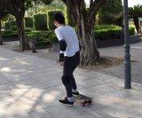 Jcb 긴 널에 의하여 바꾸이는 성인 E 4 바퀴 전기 스케이트보드