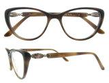 새로운 디자인 Eyewear 고품질 광학 프레임