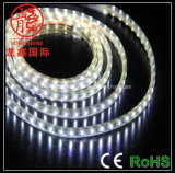 Seal Waterproof SMD5050 / 3828 Éclairage LED blanc