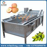 Edelstahl-automatische Frischgemüse-Frucht-Reinigungs-waschende Unterlegscheibe-Maschine