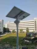 Garten 30W, der im Freien Solar-LED-Lampen-Licht mit Sonnenkollektor beleuchtet
