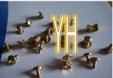 Steel et Brass inoxidables Machining Partie (X22)