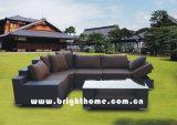 専門の屋外の余暇のPEの藤の家具
