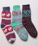 Doppelte Schichten der Frauen-Frauen-Dame-Ladys Socks steuern Hefterzufuhr-Socken automatisch an