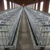 Raising Pigのための飼い葉桶との雌豚CrateかPig Fence