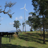 Wind 가정 Power 3000W Wind Turbine Generator 세륨