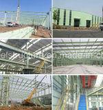 Construction industrielle structurale en acier d'usine avec le grand espace