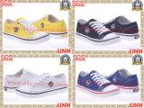 Chaussures de toile d'étudiant (SD8153)