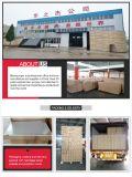 Novo design do Ginásio Use 15 Armário de armazenamento de aço da porta