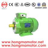 電動機Ie1/Ie2/Ie3/Ie4のセリウムUL Saso 1hma631-2p-0.18kw