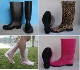 Verschiedene Frauen Belüftung-Regen-Aufladungen, Regen-Aufladung der Dame-Transparent, Form-Regen-Aufladung