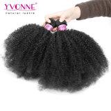 Yvonne Afro Kinky Curl pacotes de cabelo humano Cabelos Vrigin Brasileira