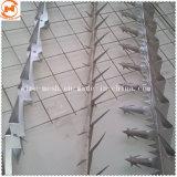 Geschweißte großformatige Wand-Spitzen-Antivögel