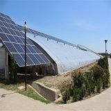 Serra di vetro di Venlo del giardino con i sistemi idroponici della serra