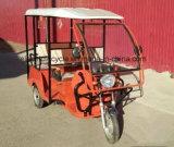 中国の乗客の使用1000Wの三輪車の自動車の人力車
