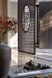 Diviseur de pièce d'écran d'acier inoxydable du panneau 304 de mur rideau