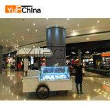 Automobile di frigorifero del Popsicle del ghiaccio di prezzi attraenti di disegno moderno