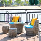 Muebles al aire libre de la rota del ocio del dormitorio de la sala de estar del balcón del jardín