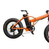 뚱뚱한 타이어 전기 자전거를 접히는 36V 350W 리튬 건전지