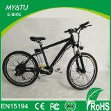 바닷가 함 니스 MTB 전기 자전거