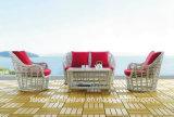 Sofà di cuoio moderno per il sofà della mobilia del sofà del salone (TG-S201)