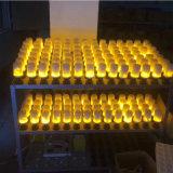 fonte luminosa da decoração do incêndio da vela de 110-240V E27 para a lâmpada de parede do jardim romântica