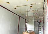 Larga vida útil de la casa contenedor prefabricado fuerte de lujo