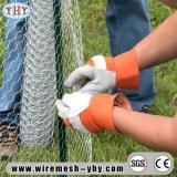 Le PVC a enduit la compensation de fil hexagonale galvanisée utilisée pour la frontière de sécurité de jardin