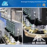 Flaschen-durchbrennenmaschine (AK-40)