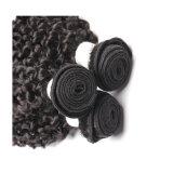 22inch加工されていない二重Weft織り方の巻き毛の人間の毛髪の拡張