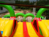 Inflatables coloré Funcity et cour de jeu ronde ronde d'Inflatables pour le film publicitaire et les gosses