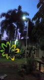 IP65 de Prijs van de fabriek! ! 5W integreerde allen in Één Zonne LEIDENE Straatlantaarn! ! De Infrarode Inductie van het menselijke Lichaam! ! De openlucht Lamp van de Tuin/van de Muur/van de Binnenplaats/van de Straat/van de Weg/van het Gazon