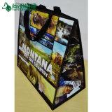 O lustro tecido PP feito sob encomenda da alta qualidade BOPP laminou o saco de compra da cópia da foto