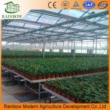 Landwirtschaftliches Gewächshausbewegliche Seedbeds für Pflanze und Gemüse
