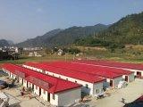ENV-Zwischenlage-Panel fabrizierte Haus für die Site-Anpassung vor, die in China hergestellt wurde