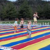 La garniture de saut a conçu pour que les gosses aient l'amusement/videur sautant gonflable de garniture à vendre
