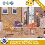 Silla de Comedor / Sillas / silla Restaurante de banquetes/ Hotel Presidente (HX-SN8038)