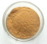 Extrait normal Mangiferin 90% de lame de mangue de 100%